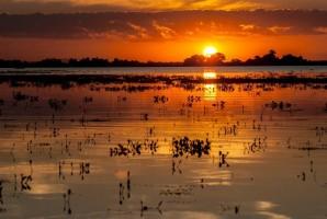 5 destinos nacionais que promovem bem-estar e contato com a natureza para visitar após a pandemia