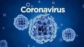 Número de casos de coronavírus está caindo em Campinas