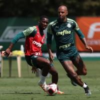 Felipe Melo nega ida ao Boca e não vê problemas na renovação: 'Foco no Palmeiras'