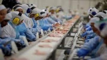Arábia Saudita suspende importações de 11 frigoríficos brasileiros