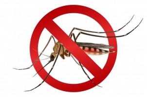 Louveira tem 15 casos confirmados de dengue e sete suspeitos; Secretaria de Saúde faz alerta