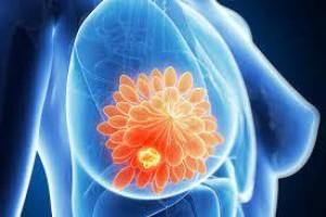 Estudo detecta em proteína mutações que levam ao câncer