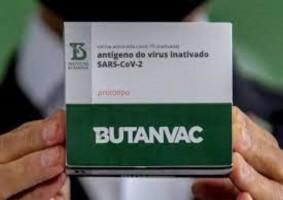 Butanvac começa a ser testada em Ribeirão Preto